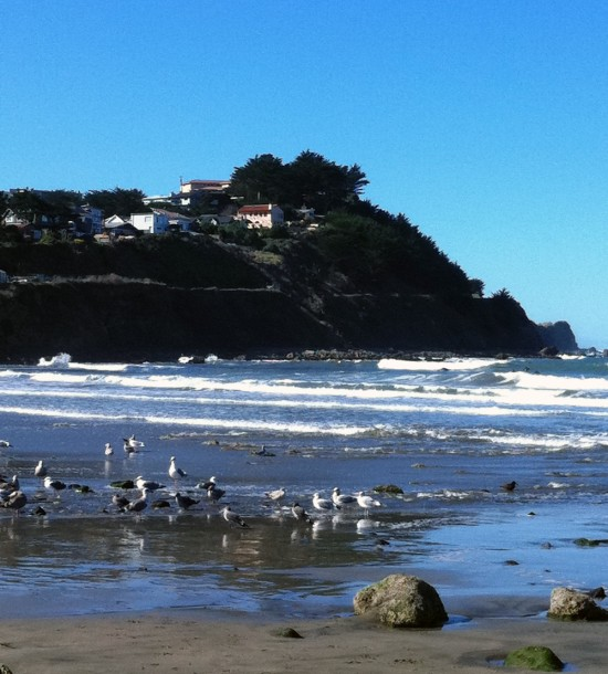 Earlier in the day when we drove by at low tide.