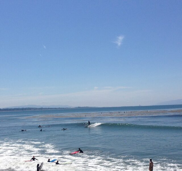Zippy Rights (Capitola 072014)