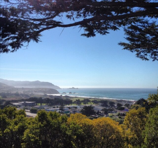 Pacifica Through the Trees