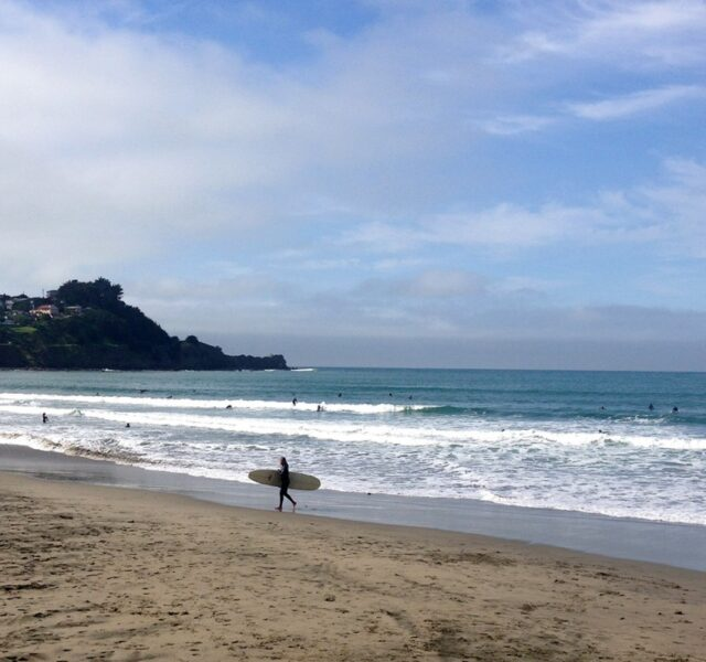 Jumbly (Pacifica 021915)
