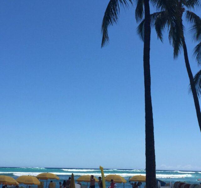 Bigger! (Waikiki 070715)