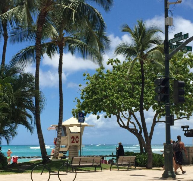 Loving this swell (Waikiki 070815)