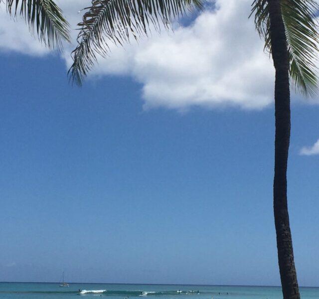 Smaller (Waikiki 070915)
