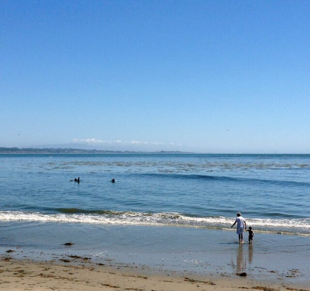 Wind, Pelicans and Stoke (Capitola)