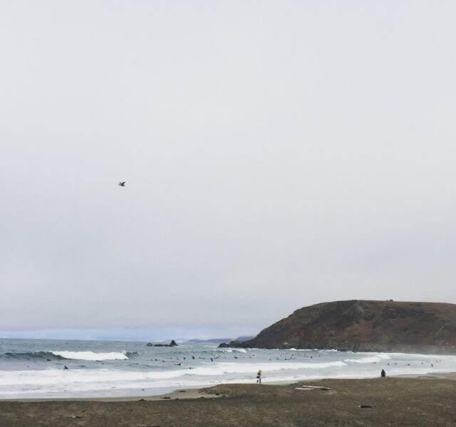 Fog and swell (Pacifica 101015)
