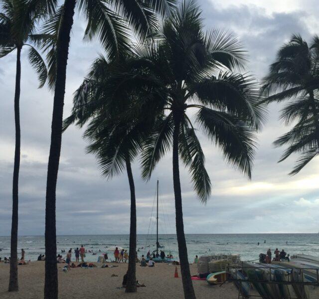 Waikiki (020616)